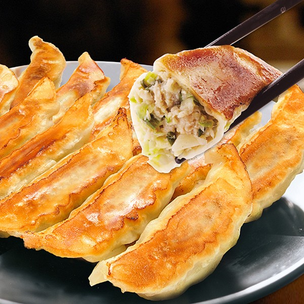 【食品ロス・食べて応援】[宇都宮餃子館]健太餃子